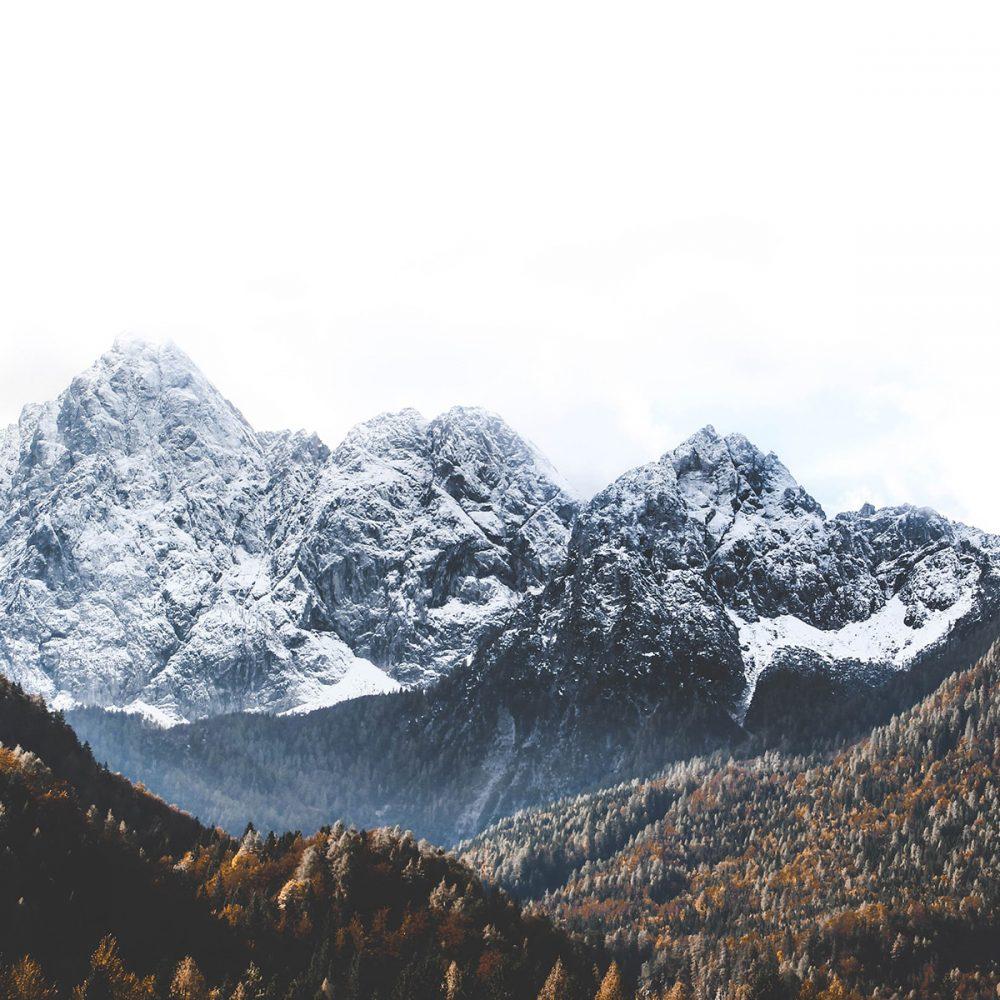 Mountain MONQ Canada